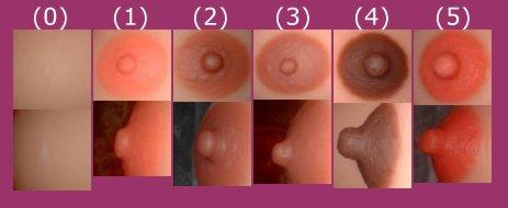 Auswahl der integrierten Brustwarzen